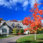 fall_yard_ts-153728140